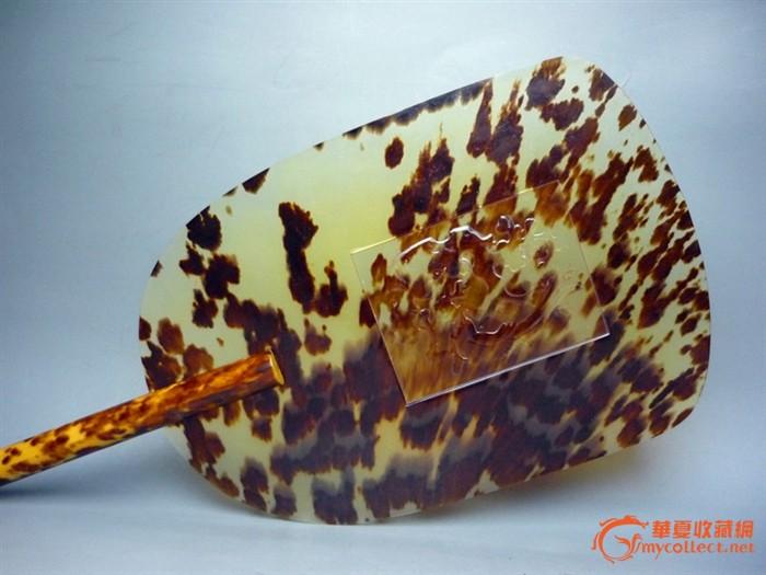 5厘米,宽:15厘米【玳瑁简介】;玳瑁鏻片花纹晶莹剔透,高贵典雅,是万年