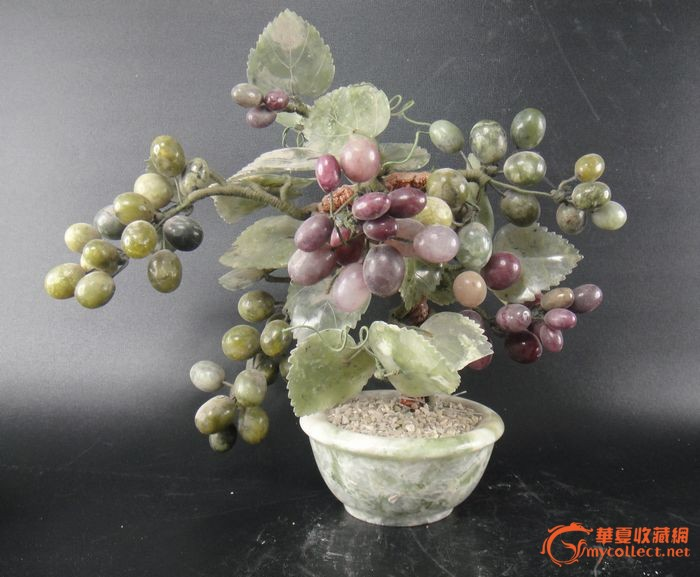 葡萄盆景图1-在线竞价-图片|图库|价格