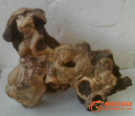 天然圆枣木根雕图1-在线竞价-图片|图库|价格