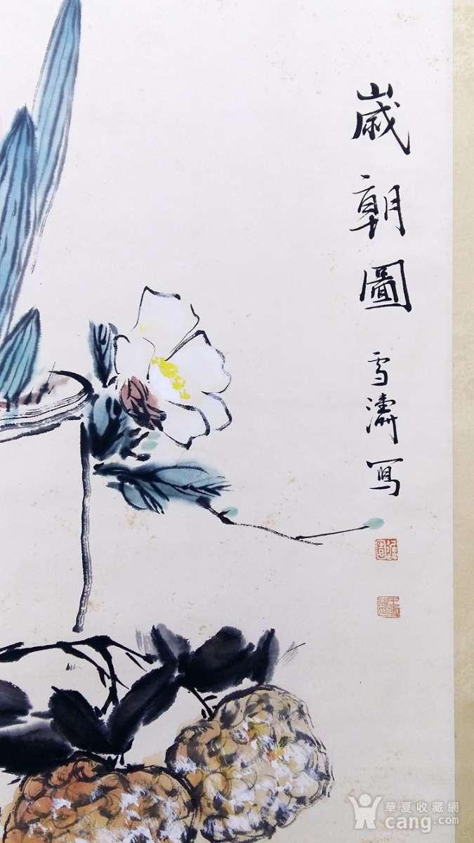 保真手绘名家王雪涛先生花鸟画立轴精品佳作!图4
