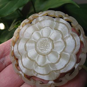 富贵牡丹花片