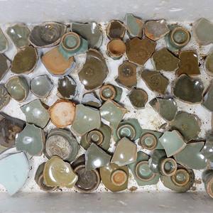 南宋龙泉瓷片一堆