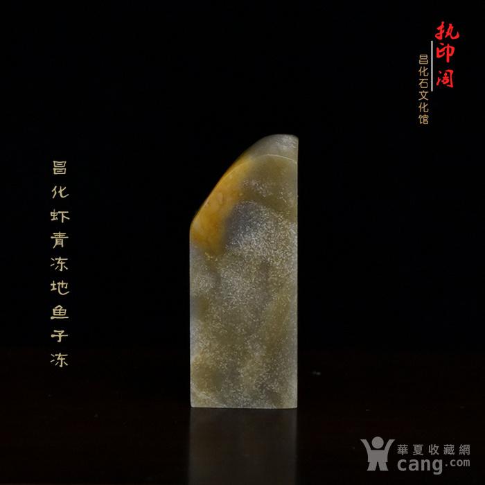 冲人气 昌化虾青冻地鱼子冻图1