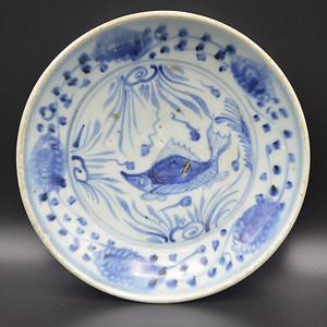 明代空白期青花鱼藻纹盘