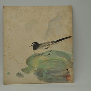 日本画花鸟