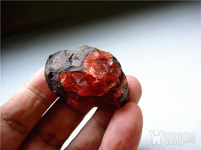 南红玛瑙柿子红满肉籽料原石图5