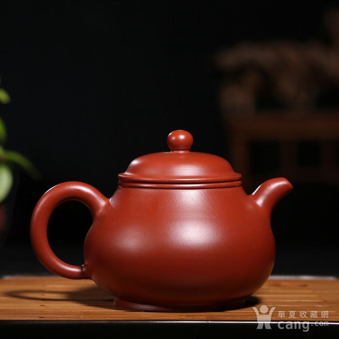 范泽洪 原矿朱泥大红袍 清泉洗心 潘壶图2