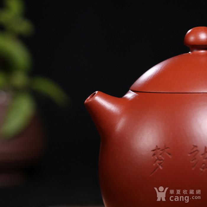 范泽洪 原矿朱泥大红袍 龙蛋图3