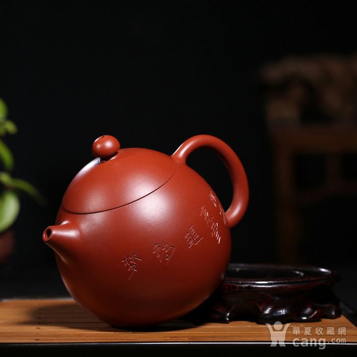范泽洪 原矿朱泥大红袍 龙蛋图5