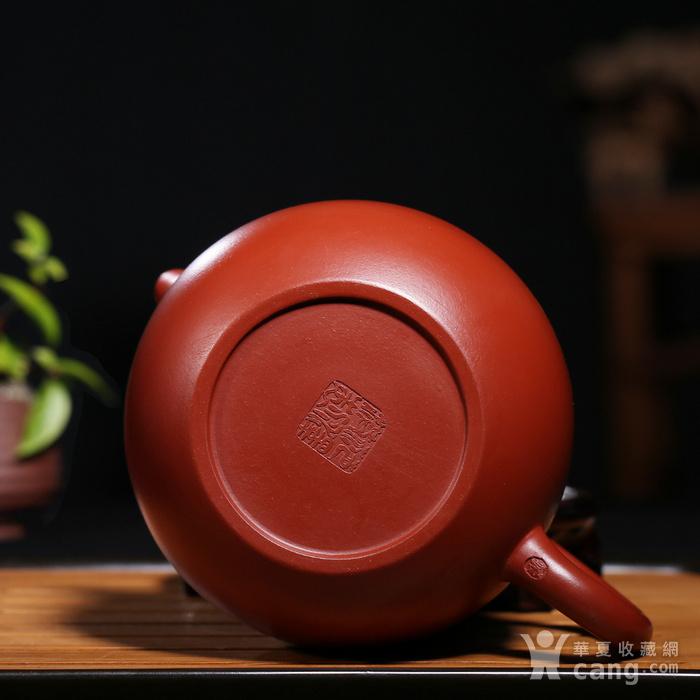 范泽洪 原矿朱泥大红袍 龙蛋图9