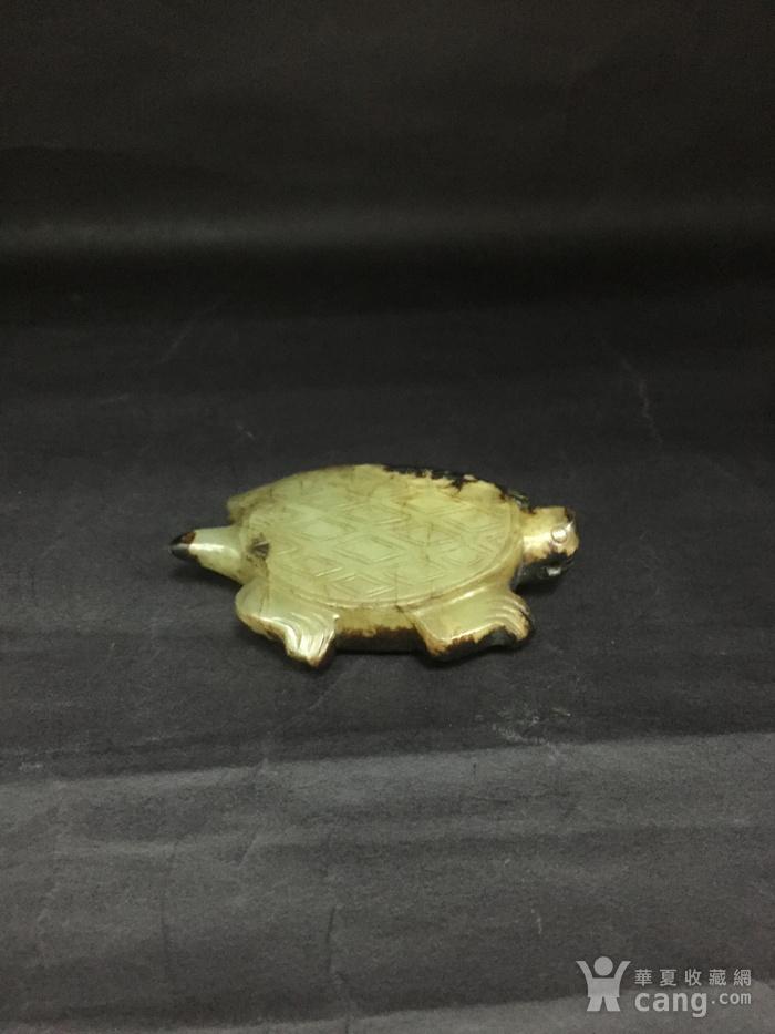 和田玉长寿龟图1
