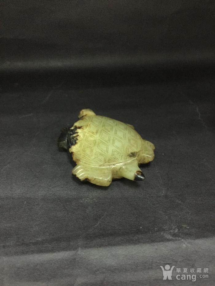 和田玉长寿龟图6