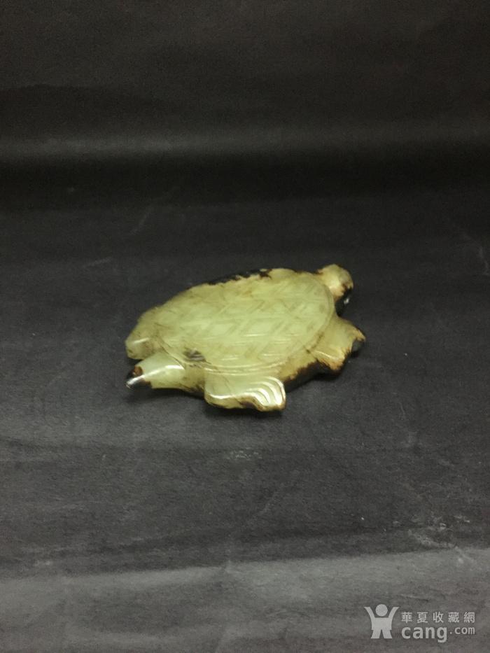和田玉长寿龟图7