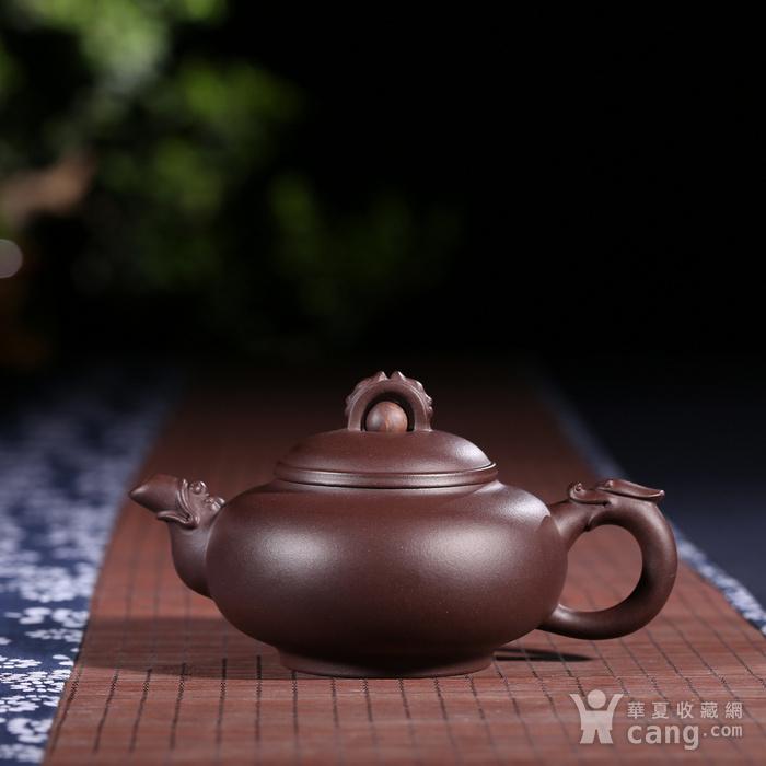 刘少明 原矿紫泥 龙珠图1