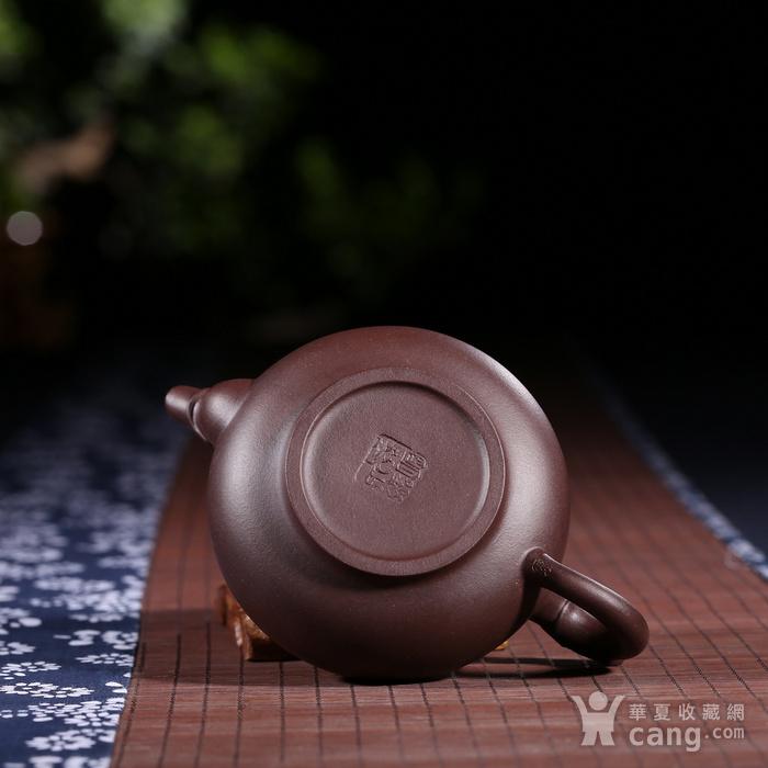 刘少明 原矿紫泥 龙珠图9
