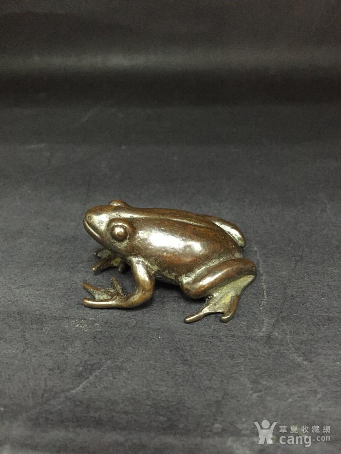 铜青蛙图2