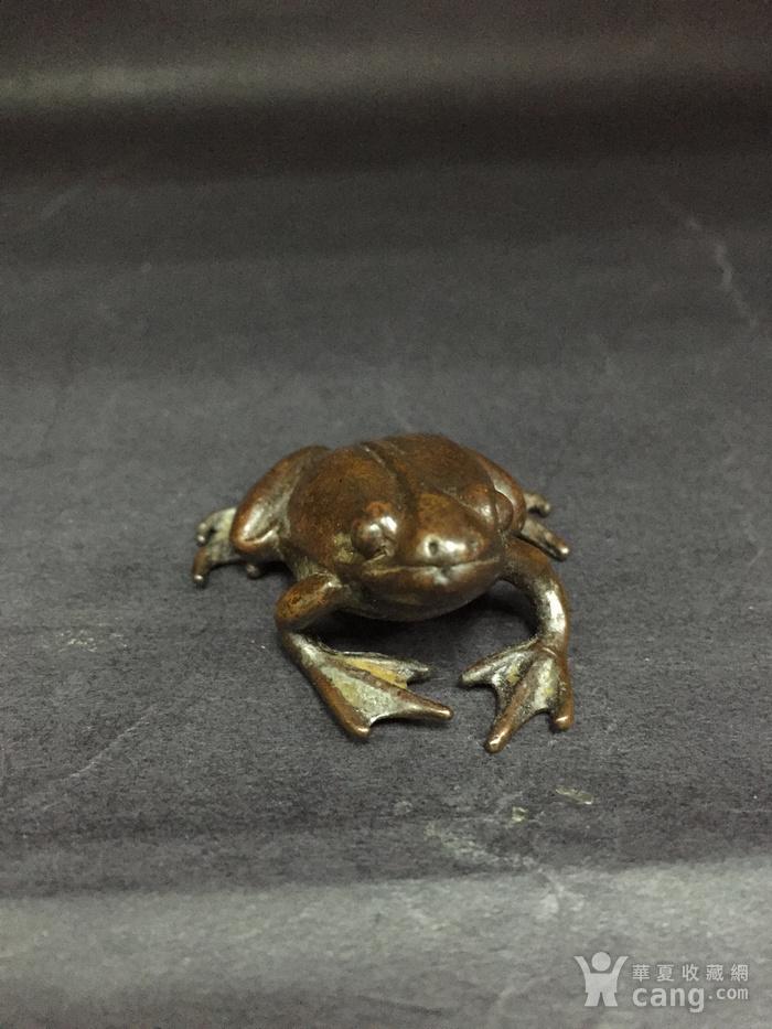铜青蛙图5