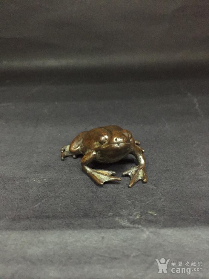 铜青蛙图12