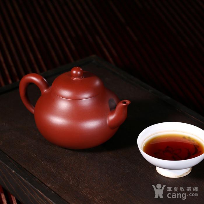 戴鹏飞朱泥大红袍梨形壶图5