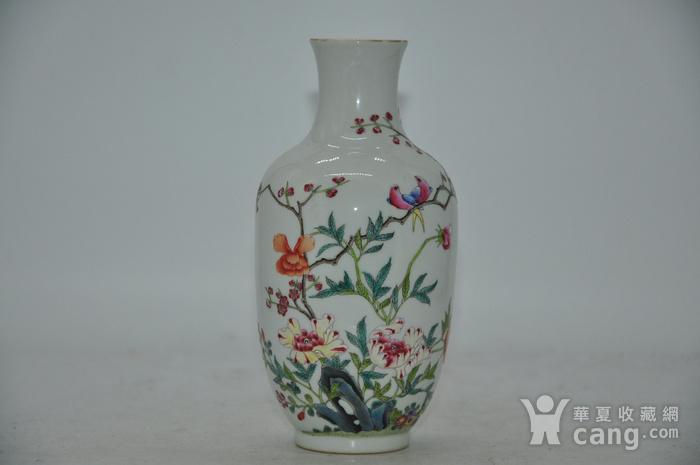 花鸟粉彩瓷瓶图1