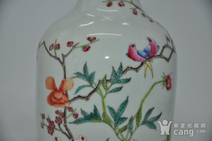 花鸟粉彩瓷瓶图5
