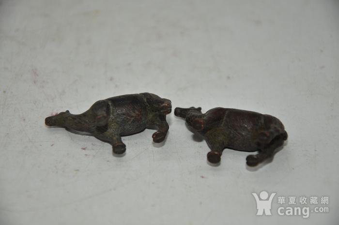 日本茶道香道用品铸铜小骆驼图12
