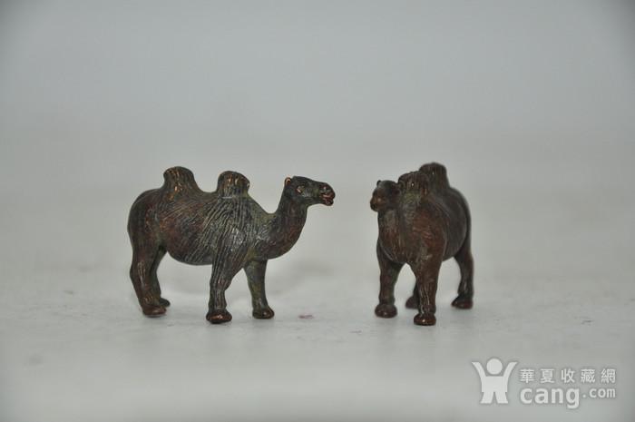 日本茶道香道用品铸铜小骆驼图4