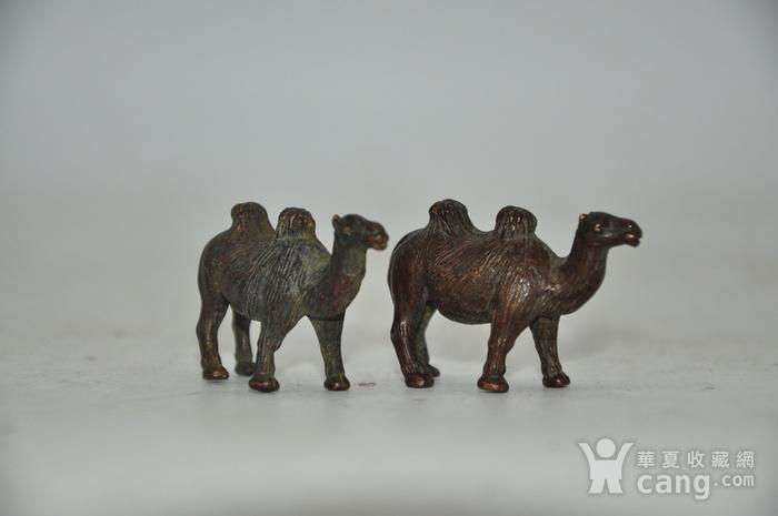 日本茶道香道用品铸铜小骆驼图6