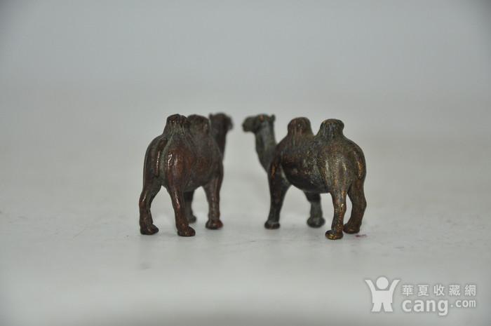 日本茶道香道用品铸铜小骆驼图7
