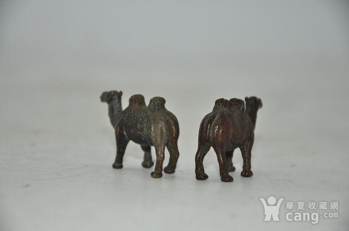 日本茶道香道用品铸铜小骆驼图8