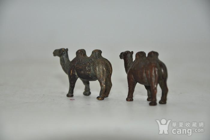 日本茶道香道用品铸铜小骆驼图10