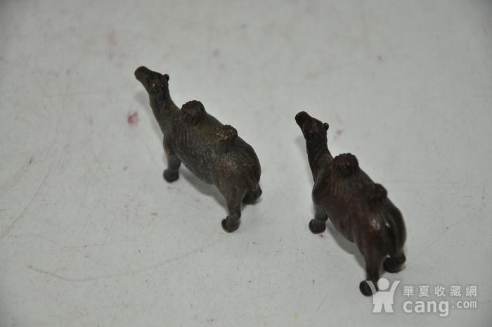 日本茶道香道用品铸铜小骆驼图11