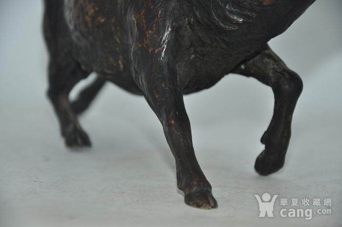 日本铸造几十年铜野猪图8