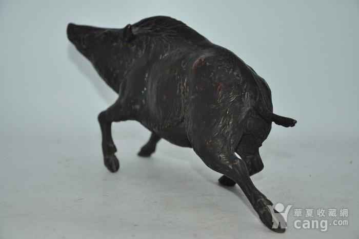 日本铸造几十年铜野猪图4