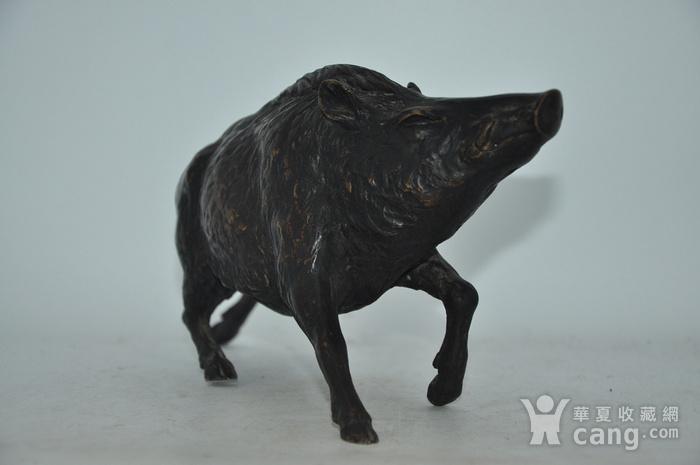 日本铸造几十年铜野猪图3