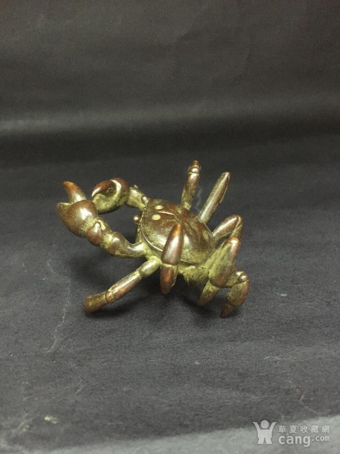 八方来财螃蟹图4