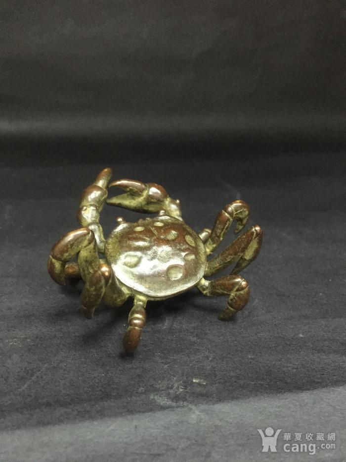 八方来财螃蟹图11