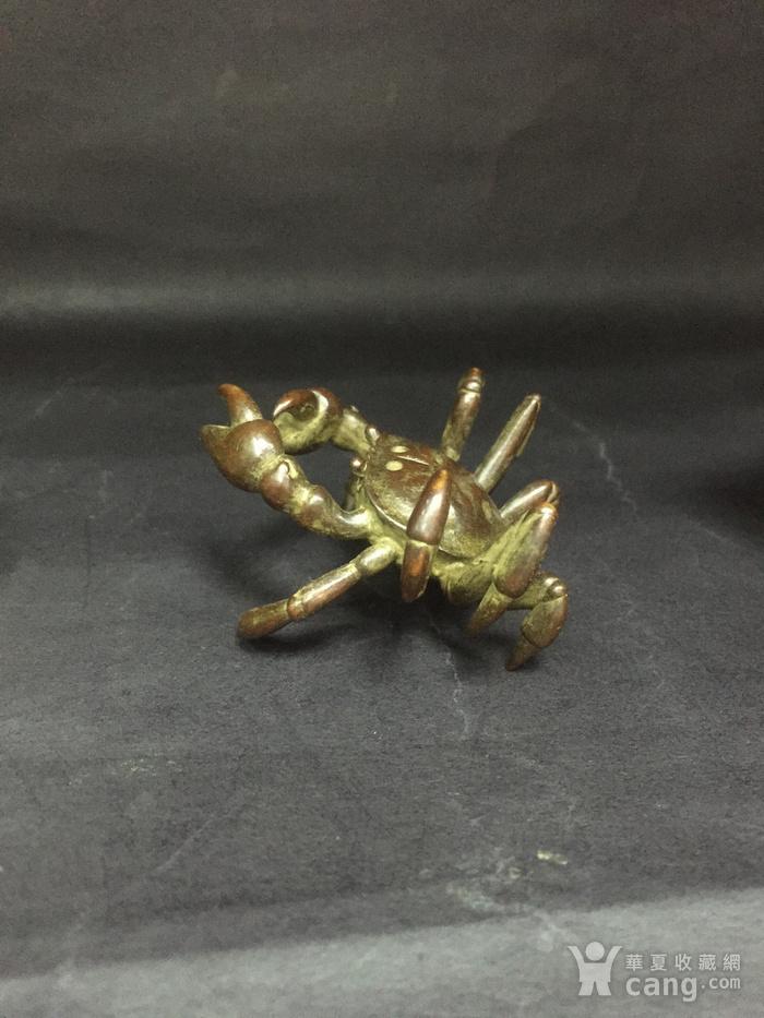 八方来财螃蟹图12