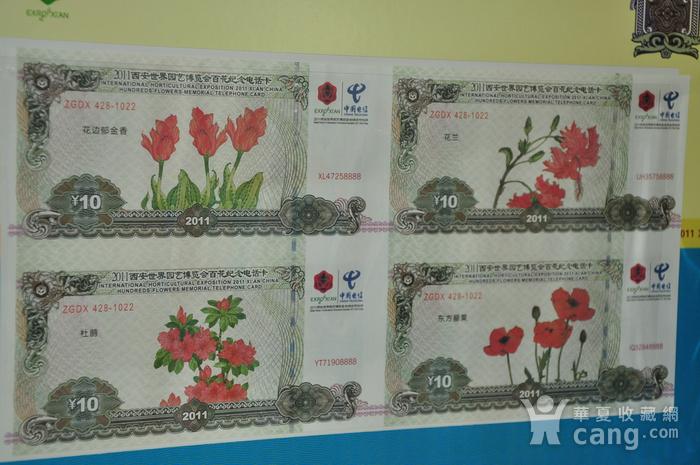 2011年西安世园会纸钞电话卡收藏品图5
