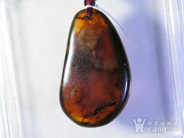 天然琥珀原石挂件12.3克图3