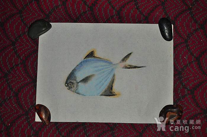 日本鱼拓图图1