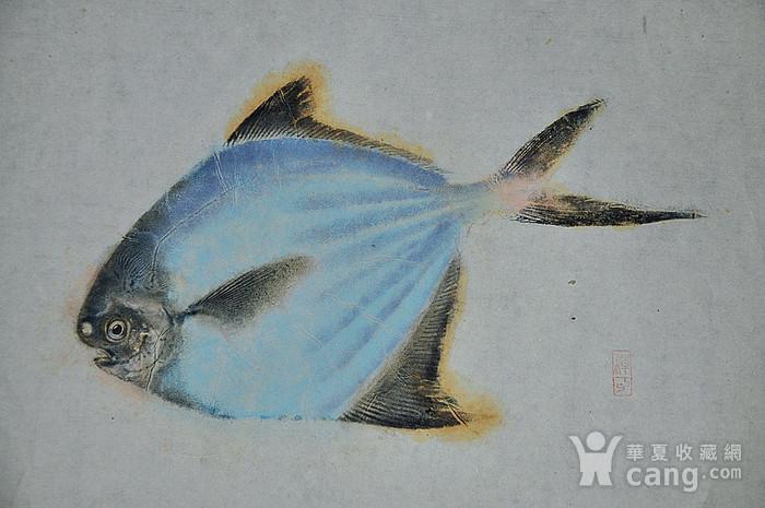 日本鱼拓图图2