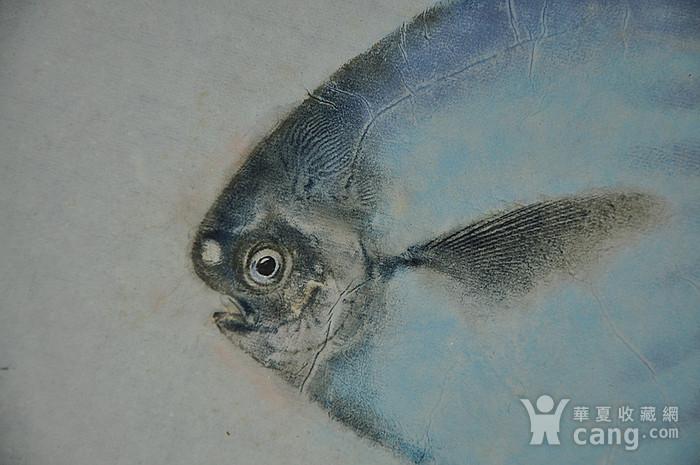 日本鱼拓图图3