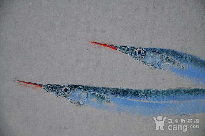 日本鱼拓图图4
