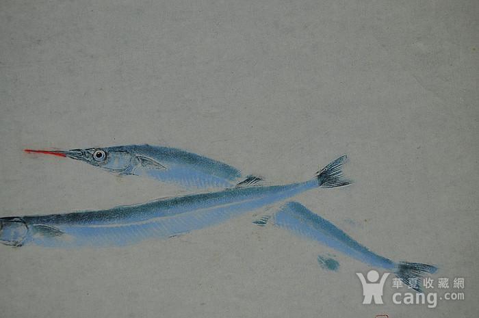 日本鱼拓图图7