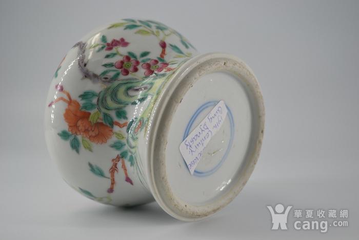 清雍正粉彩洞石花卉小将军罐图4