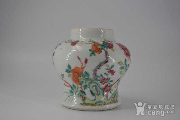 清雍正粉彩洞石花卉小将军罐图12