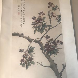 金牌 汪庆娥  梅花图