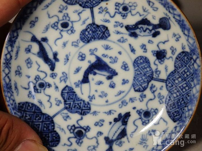 康熙紫金釉青花鱼藻绘画杯碟一套图2