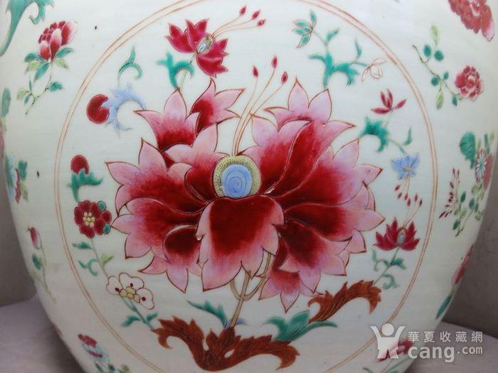 雍正大号粉彩花卉绘画卷缸图4